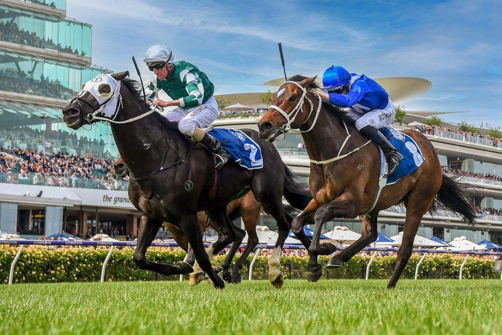 Yulong Prince. Grade 1 winner in Australia. Bred by Varsfontein Stud by Gimmethegreenlight ex Congestion Charge