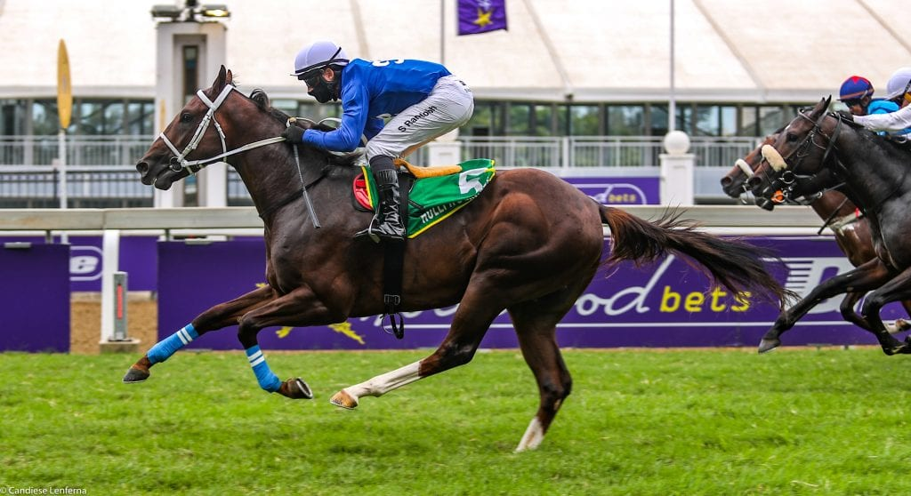 Global Glory, first winner for Red Ray. Image: Candiese Lenferna